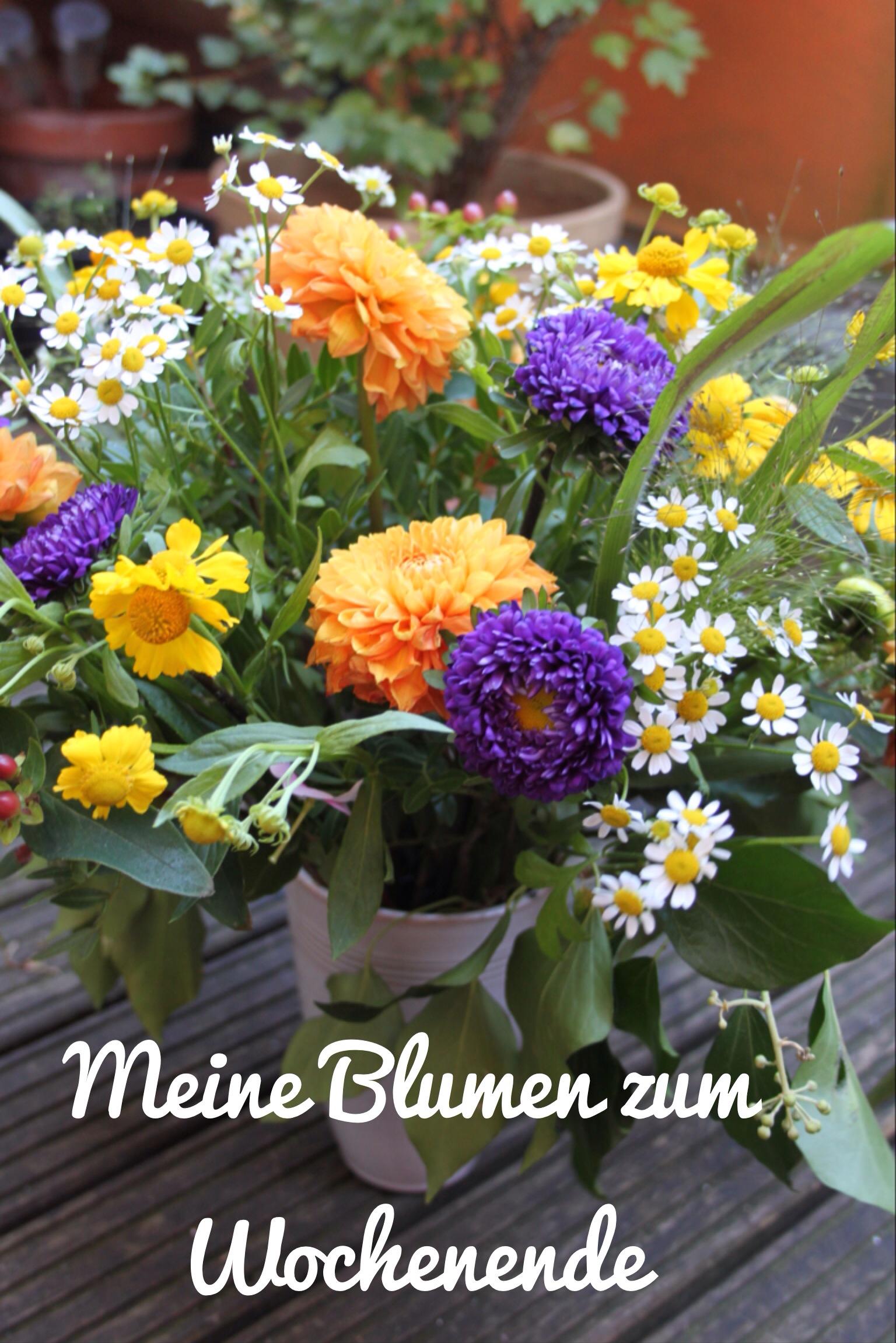 Flower-Friday # 35